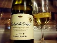 今日のワインは、イタリアの白