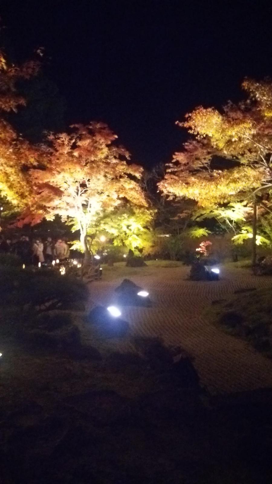 円通院のライトアップ