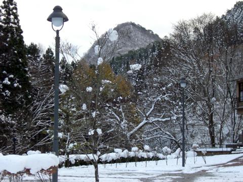 初雪だよ♪