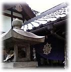 法善寺横丁、石灯籠で眠る猫