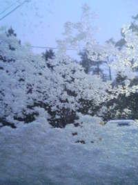 吹雪だぁぁぁ!!!