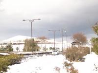 春恋なのに雪景色