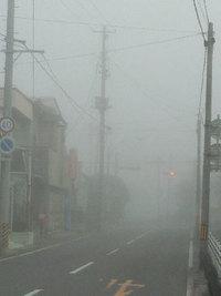 すごい霧です(^◇^;)