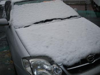 雪ががが!!!