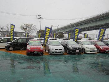 雪かよっ!!