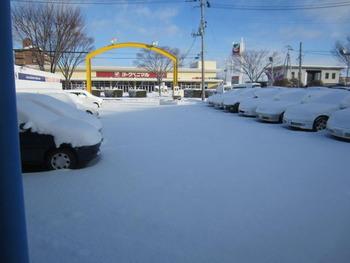 ☆雪☆雪☆