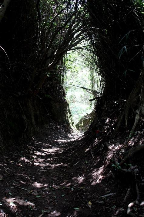 トンネルととろ