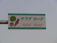サラダロード