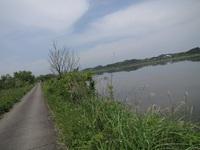 伊豆沼の道