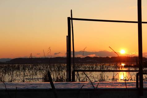 伊豆沼の浮き桟橋