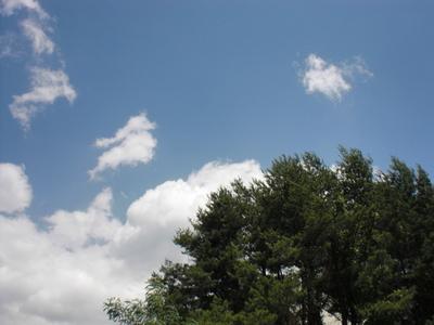 今日は暑かったですね~!
