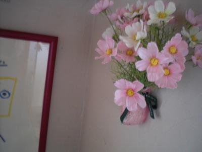 秋桜の花言葉は。。。