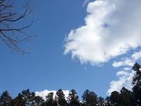 大崎八幡神社での再会。