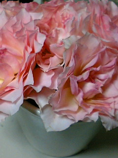 花のある生活2
