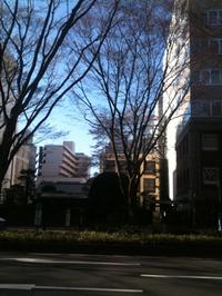 桜散歩〜晩翠草堂