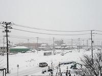 今週末も大雪で雪かきが大変だ