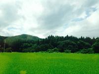 【やまゆりの宿】 台風にまけないお盆休み。 2014/08/20 07:25:00