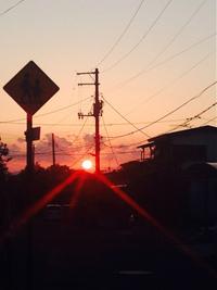 団地にも、団地なりに夕陽が沈むよ。 2014/05/19 07:27:00