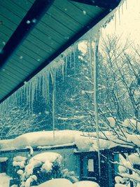 #1  冬のなるこみち。 2015/01/05 07:31:00