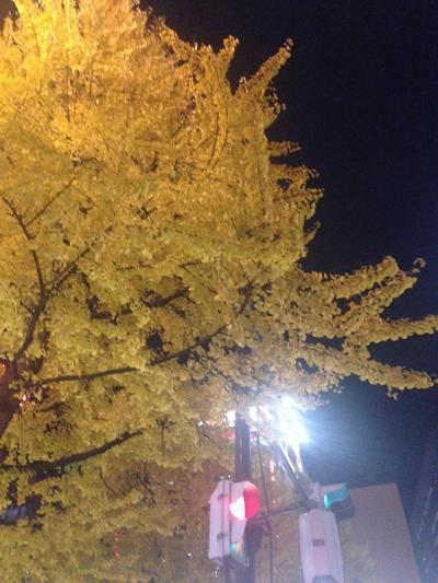 【黄】それは、東北のカラフル2014。