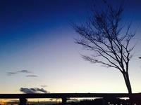 冬立ちぬ。 2013/12/02 07:28:00