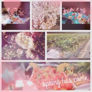 ❀~春満喫~❀