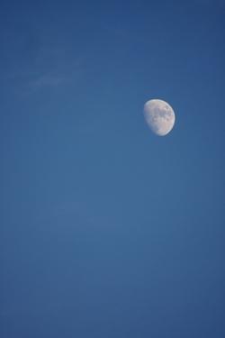 天空模様/文月