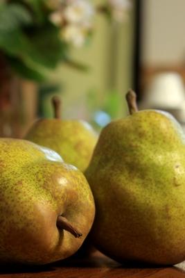 山形の柿とラフランス/仙台味噌の焼きおにぎり