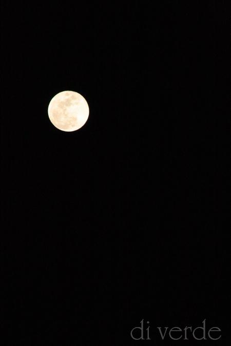 天空模様 ~満月~