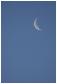 天空模様*朝の月