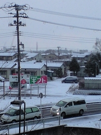 今朝は雪がつもりました