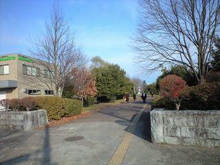 富沢駅に近い富沢公園です