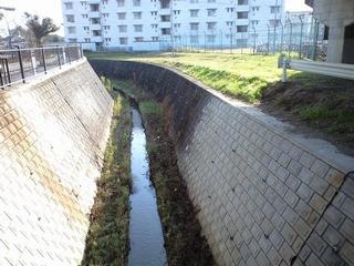 富沢を流れる新笊川