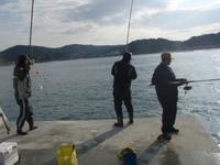 いつまで続く?六ヶ浦漁港のサバ釣り