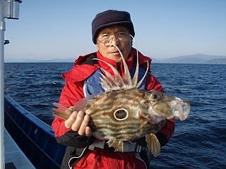 サン・ピエトロは美味しい魚