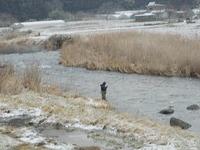 2011年3月1日気仙川渓流釣り解禁情報!