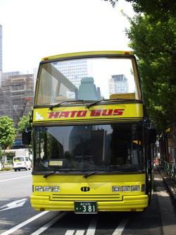 灼熱の「はとバス」ツアー。
