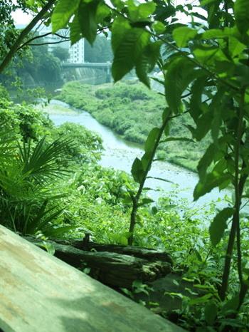広瀬川のほとりで。