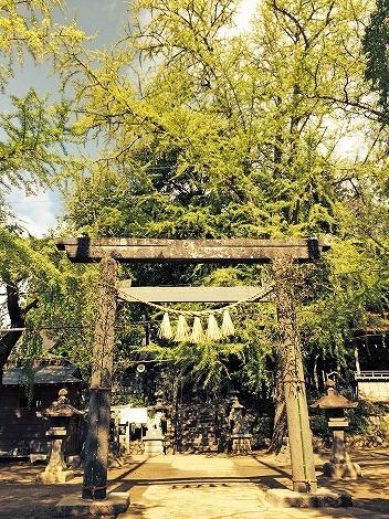 多賀神社に月詣り