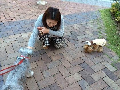 『愛犬撮影会 in 仙台・太白区』のご案内