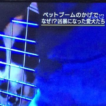 いまいちど...NHKプロフェッショナル
