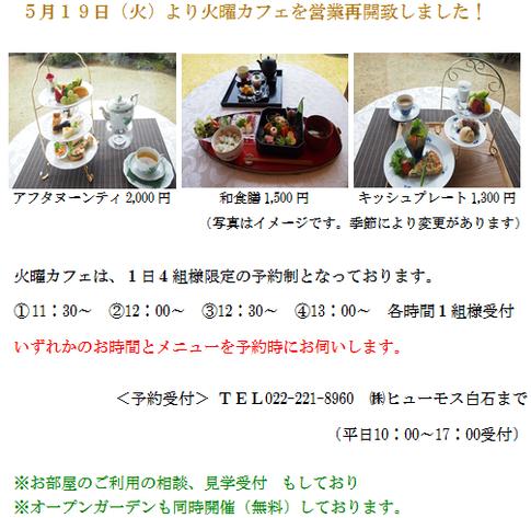 5月19日より火曜カフェ営業再開しました