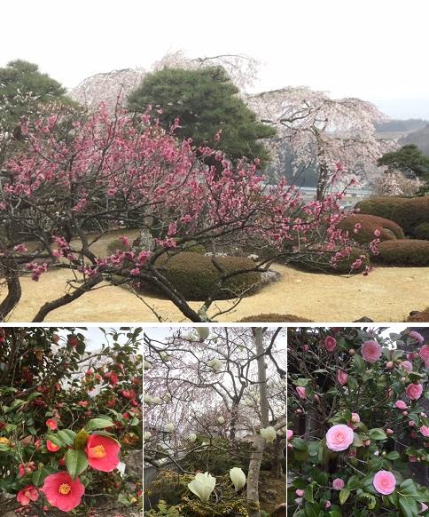 花咲く庭園