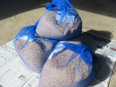 今年の種籾届きました。