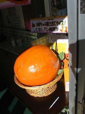 かぼちゃの重さ当てクイズに挑戦しました。