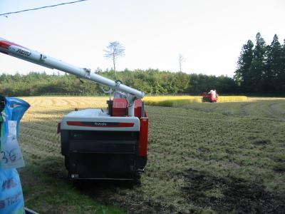 今年も稲刈り終わりました。