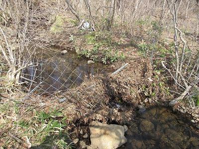 大切な小川用水路が木の葉でふさがっていました。