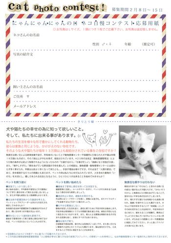 にゃん・にゃん・にゃんの日、スウィング「ネコ自慢コンテスト」!!!
