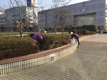 泉中央地区 春の一斉清掃