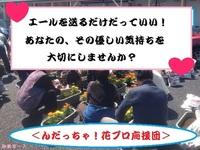 Facebookで仲間作り〜♪被災地に花を咲かせましょう!
